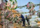 Nestvarni prizori: Gospodska ulica u cvjetnom ruhu