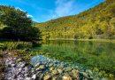 Ribnik – mjesto meditacije, odmora i čistog užitka